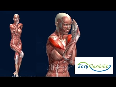 , title : 'How to Eagle Pose Garudasana Yoga  Muscle Anatomy EasyFlexiiblity'