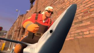 The Shark Fighter