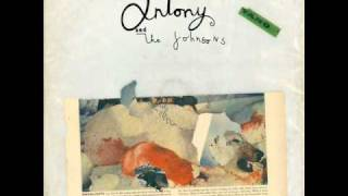 Antony & The Johnsons - Swanlights (HQ)