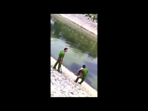 Trộm xe đạp, nhảy sông tô lịch để chạy trốn.