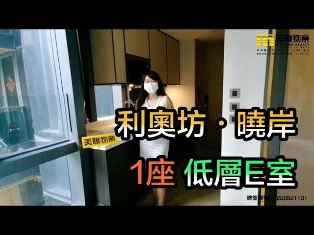 【代理Amy推介】利奧坊.曉岸1座低層E室