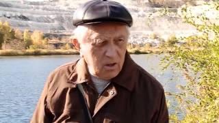 Биолог опроверг несколько версий появления медуз в озере в Вольске