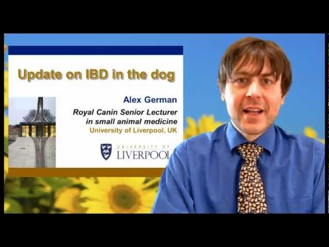 Veterinary video: Update on IBD in the dog by dr. Alex German