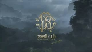 Jungle Party  Cavalli Club Dubai  1016