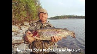 Лучшие реки для рыбалки в карелии