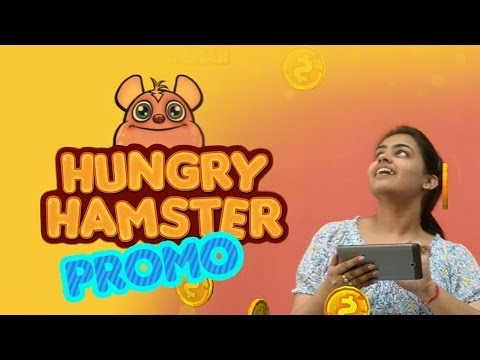 Video of Hungry Hamster