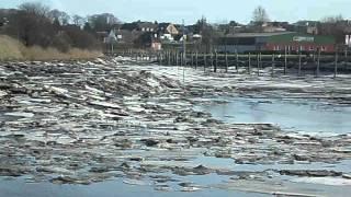 preview picture of video 'Husumer Hafen mit Eisschollen. 17.2.2012.'