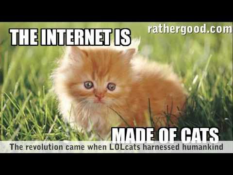 Internet je vyroben z koček