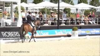 Video von Condor