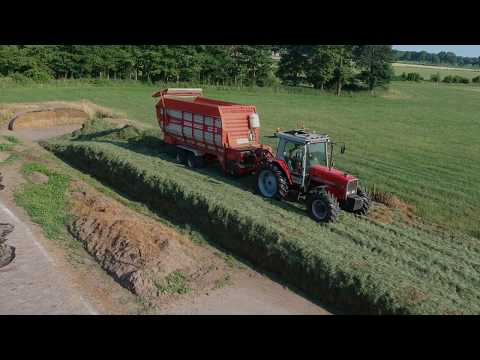 MF 3080 and 6255 at the silage with Kemper and Holaras.