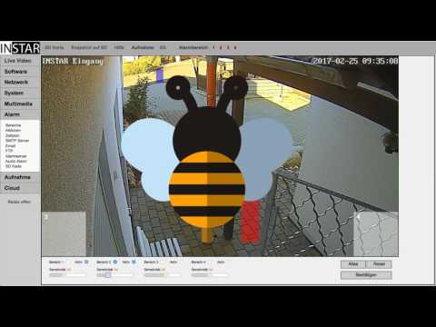Motion Detection Setup