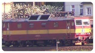 preview picture of video 'Knödelpressen im Elbtal - Zweisystem Loks BR 180 DB und BR 372 ČD'