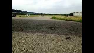 水と緑と風広場(相模川河川敷)のイメージ