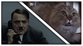 Hitler phones the NONONO Cat