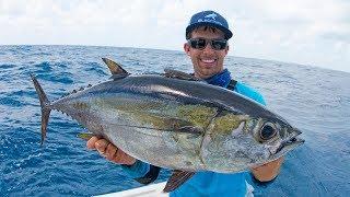Fishing for Dinner Fish in Miami - 4K