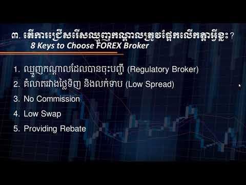 Forex investuoja gyvus signalus