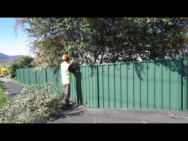 Irwin Clements Tree Service - Hobart TAS 7000