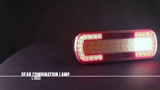 Tail lights with dynamic indicator