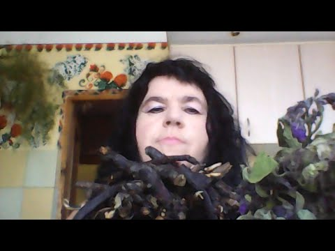Rośliny korzeniowe z alkoholizmem