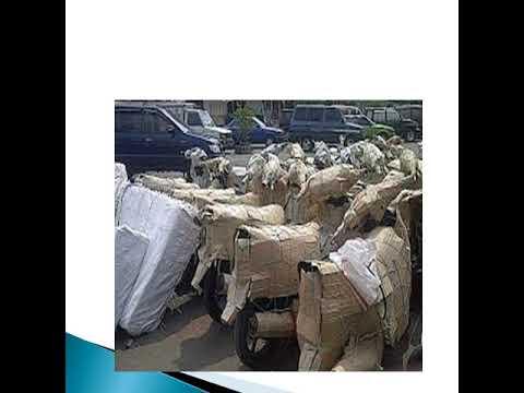 TERMURAH !! 0818-0437-0050 PT. MAXINDO SUKSES EXPRESS, JASA PENGIRIMAN MOTOR YANG BAGUS