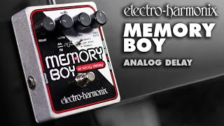Electro Harmonix Canyon Video