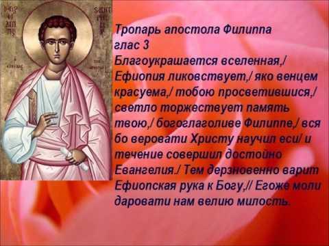 Тропарь  Святому Апостолу Филиппу