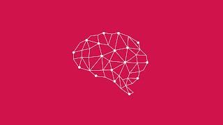Cambridge Analytica – What We Do