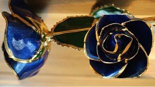 I HATE Steven Singer Enchanted Rose 24kt Gold Dipped Rose! Happy Valentine's DaY!