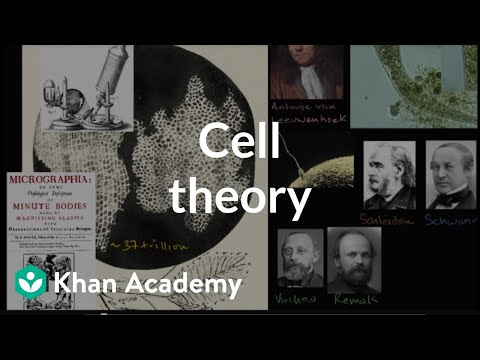 Cell theory (video) | Introduction to cells | Khan Academy
