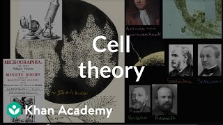 Grade 7 Science | Cell theory | Khan Academy