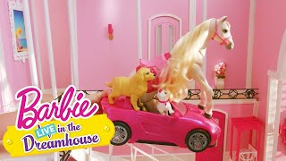 Velké Prádlo | Barbie LIVE! In The Dreamhouse | Barbie