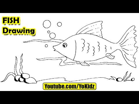 How to draw a fish step by step easy for kids