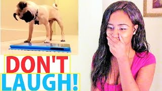 TRY NOT TO LAUGH CHALLENGE - KIDS & DOGS ( Kiki Pepper Reaction ) Funny
