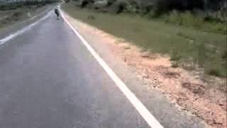 preview picture of video 'Surfeando el asfalto en Minas'