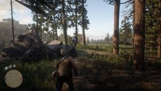 Red Dead Redemption 2 Horse Poop Crash