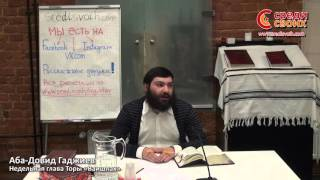 Аба Довид Гаджиев.  Недельная глава Торы «Ваишлах» 25.11.2015г