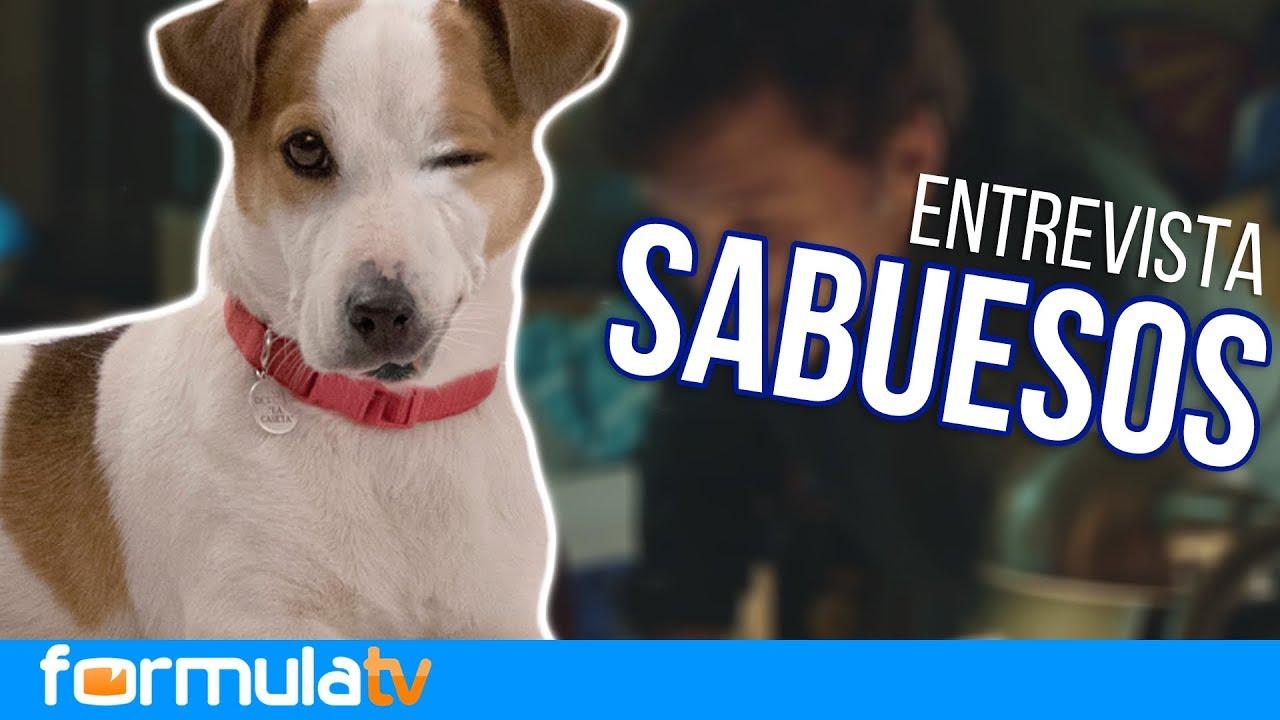 contamos todos los secretos del rodaje del perro en 'Sabuesos