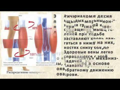 Wasserstoffperoxid-Behandlung von Prostata-