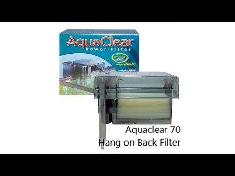 Aquaclear 70 Hang on Back Filter Review and Tips
