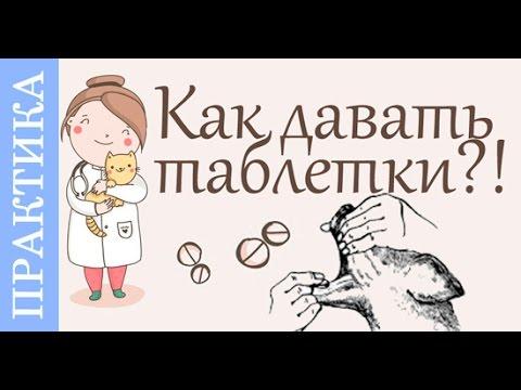 Глисты симптомы у девушки