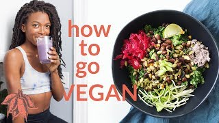 Beginner's Guide to Going VEGAN 🍠🌿