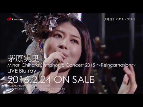 【声優動画】茅原実里のシンフォニックコンサート2015 Reincarnationのダイジェスト映像公開