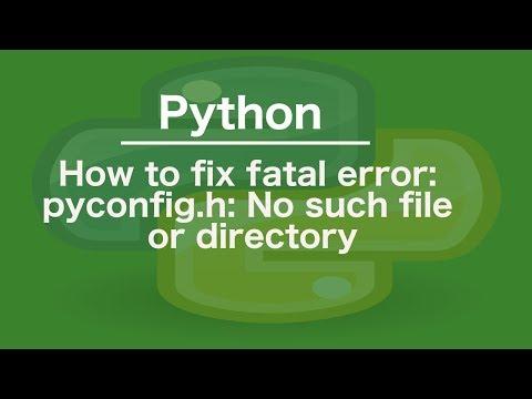 Pyconfig h все видео по тэгу на igrovoetv online