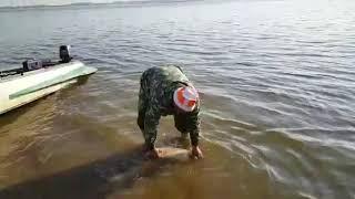 На волгу рф рыболовная база