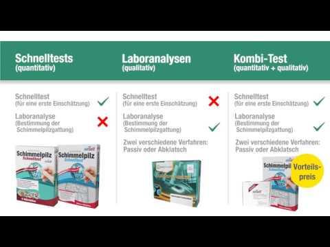 Schimmeltest Vergleich – richtiger Schimmelpilz Test für Ihren Schimmelbefall (Schnelltest & Labor)