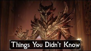 Skyrim: 5 Things You Probably Didn't Know You Could Do - The Elder Scrolls 5: Secrets (Part 20)