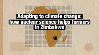 How nuclear science helps farmers in Zimbabwe
