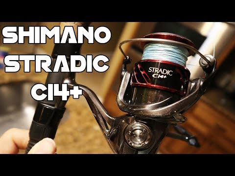 Shimano | Fishing Equipment: Many Fishing Gear Reviews