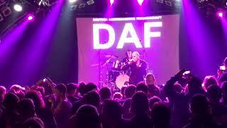 DAF – Der Räuber Und Der Prinz (Hamburg 2017)