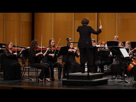 Performance as a section double bassist in the Oconomowoc Chamber Orchestra.
